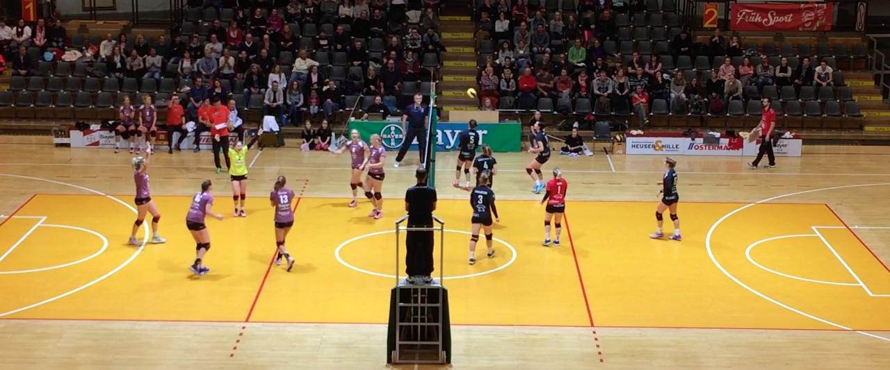 leverkusen volleyball